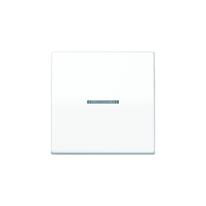Jung ABAS 591 KO5 WW Wippe, Linse, Lichtleiter, Zentralplatte, antibakteriell, für Wipp-Kontrollschalter, Tast-Kontrollschalter